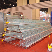 Poultry farm equipment multi-tier layer chicken cage manufacturer