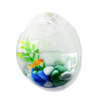 Mini wall mounted half sphere shape acrylic aquarium tank