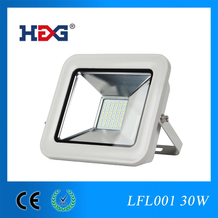 New arrvial ip66 50w pir led flood light luminaire projector lighting producer