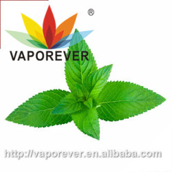 Natural mint essence flavor concentrate add in PG VG base for vapor juice