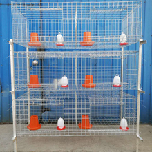 galvanized chicken cage stainless steel baby chick cage