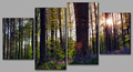 Wholesale group canvas printing, natural scenery paintings 4 panel canvas art
