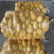 pp mesh bag for packing vegetables