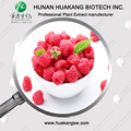 Natural Pure Fruit Juice Powder Raspberry Juice Powder
