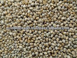 Indian Millets Prices