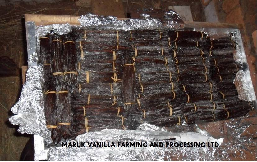 CURED VANILLA BEANS