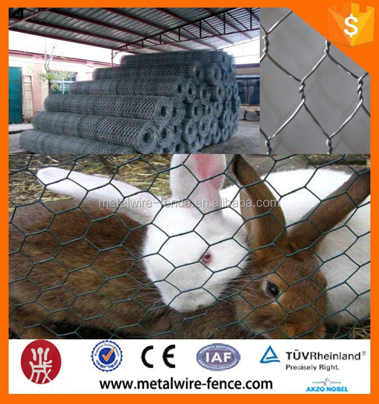 Poultry Netting/Galvanized Hexagonal Wire Mesh Factory