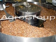 Cocoa Beans cooler
