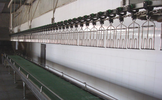 Chicken slaughtering equipment with cold room