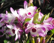 All natural Dendrobium , enhance workout intensity and duration