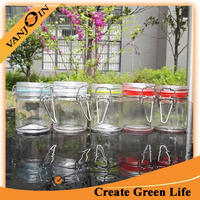 50ml Round Glass Clip Top Spice Jar With Silicon Sealing Ring Honey Canister Jar With Hinge Lids High quality