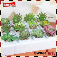 Wholesale Fake Plants High Quality Mini Potted Artificial Succulents