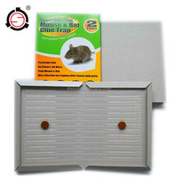 Hot Selling Mouse Glue Trap the simple rat trap low price rat glue trap