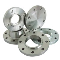 ASTM A182 F316L WNRF SORF BLRF Stainless Steel Flange