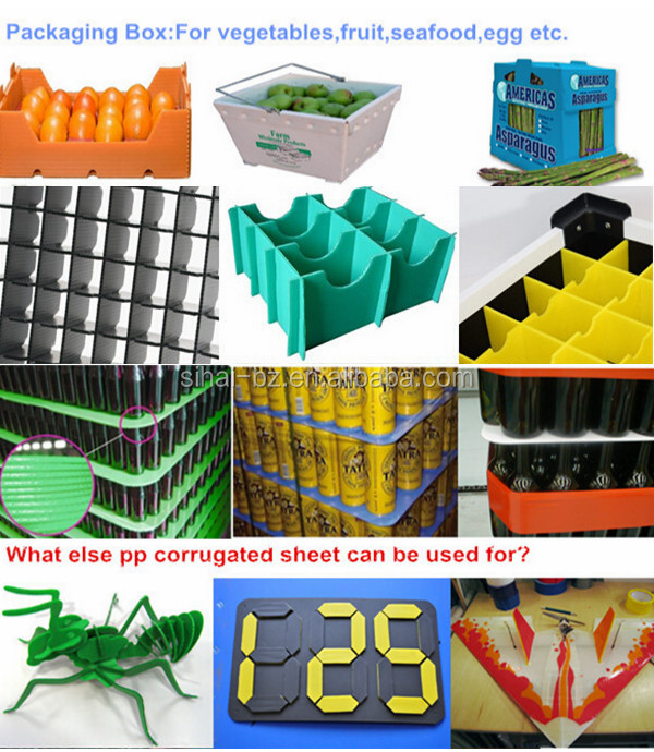 pp corrugated plastic container manufacturer for packaging and printing products