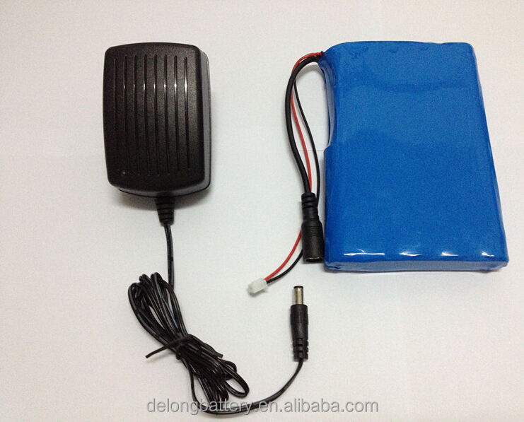Customize 12V 11ah 12ah 15ah 16ah rechargeable lithium battery pack with battery charger