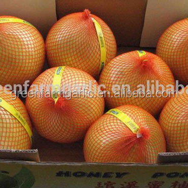 chinese pomelo fruit