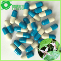 Top Quality Epimedium Extract capsule and softgel Private Label