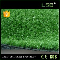 30Mm Landscape Hot Artificial Grass For Gymnasium
