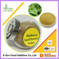 10:1 Mulberry Leaf Extract Powder DNJ (1-Deoxynojirimycin hydrochloride) In Bulk