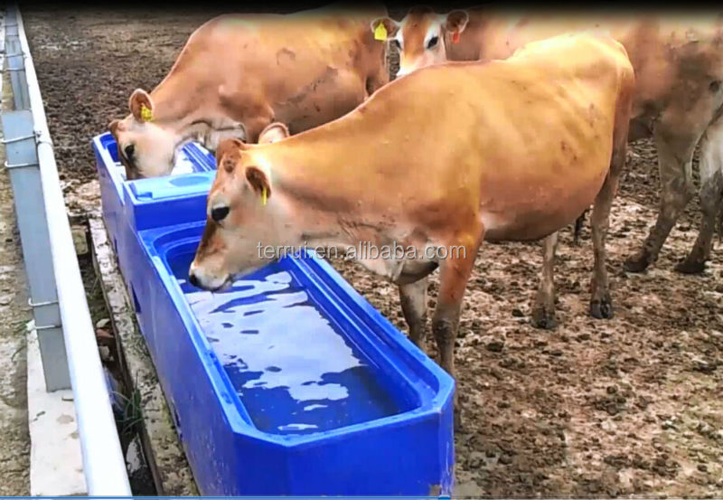 Cattle Drinking Tank Trough Waterer Bowl Buy Drinking