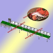 Fish grading machine|Fish sorter