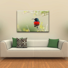 Small cute colorful bird modern chinese wall art pictures for fabric painting