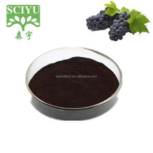 high quality Powder Friuit Grape Skin Powder 20%-30%Polyphenols Grape Skin Extract