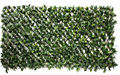 1*2 meter artificial hedge with UV plastic leaves