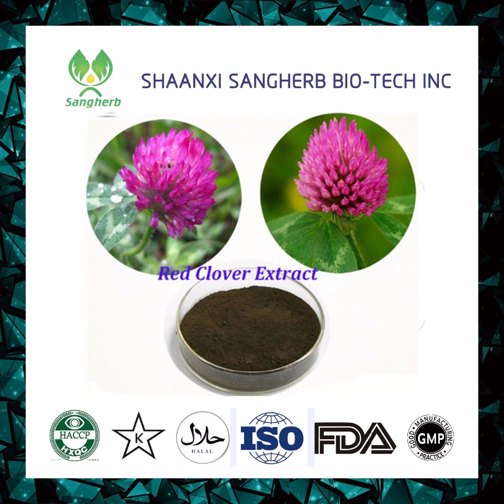 Women health herb 8%- 40% Isoflavones Red Clover Flower Extract
