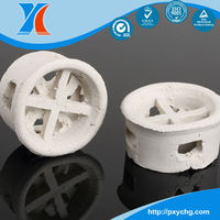 Heat Resistance Ceramic Cascade Mini Ring Tower Packing