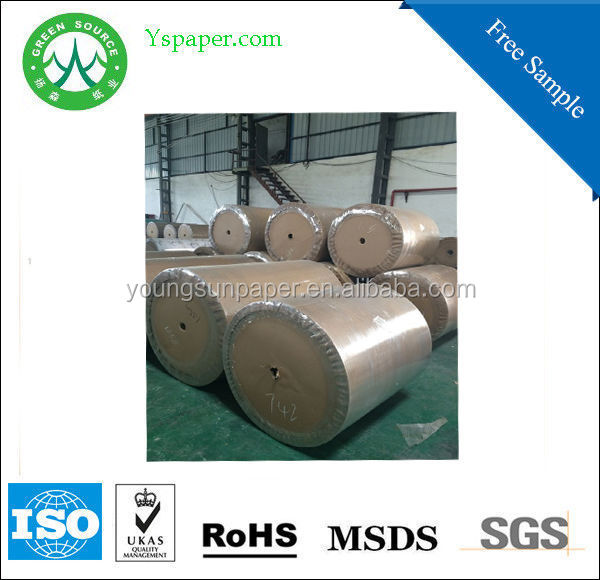 single /double side pe coated paper/pe coated paper in <strong>roll</strong> or coated paper sheet