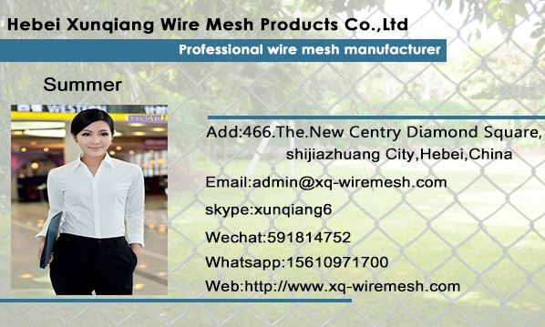 Hight quality protecting mesh galvanized welded wire mesh panel for sale