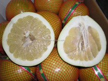 New crop honey pomelo names fruits arabic