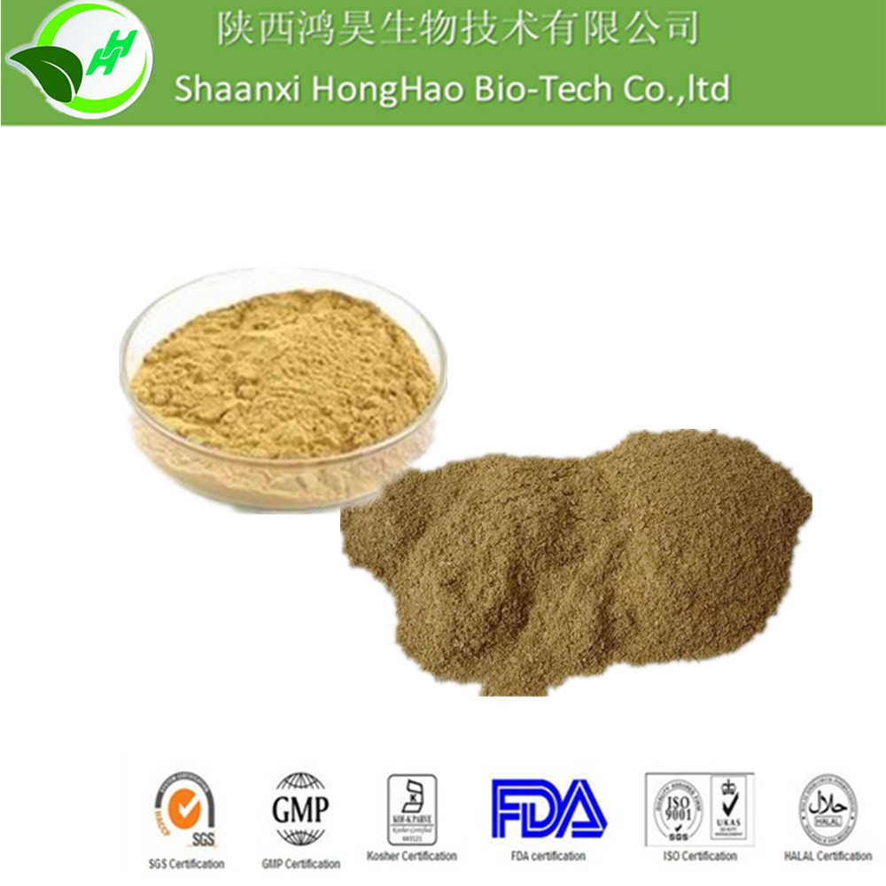 Herbal Extract Cosmetic Grade Mitragyna Javanica Extract 5%Ceramide