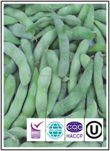 New crops 2017 IQF soybeans soy beans