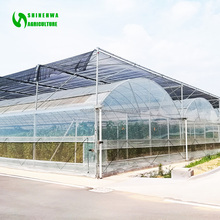 Agricultural Poly Film Greenhouse/ Greenhouse Equipment/ Horticulture
