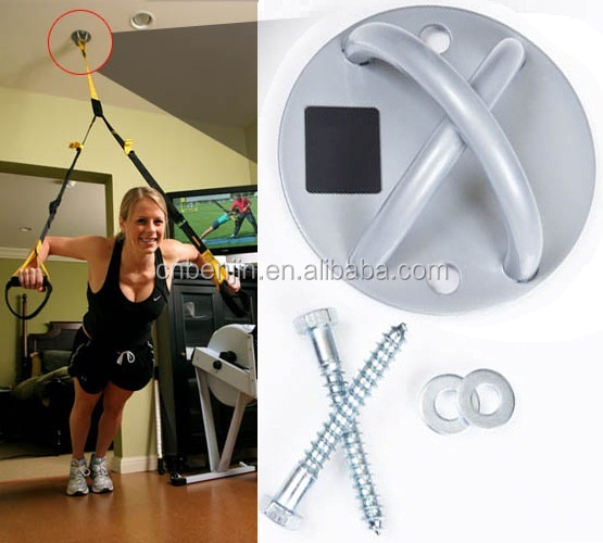 Fitness Pro Gym / Home Training Straps + Ceiling mount.