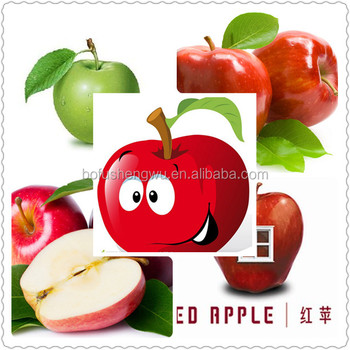 natural apple extract powder/green apple extract powder/apple extract (phloretin)