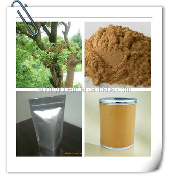 high quality Bayberry Root Bark powder factory direct sale and good price