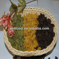 dried fruit,jumbo size,chinese dry ,all raisins