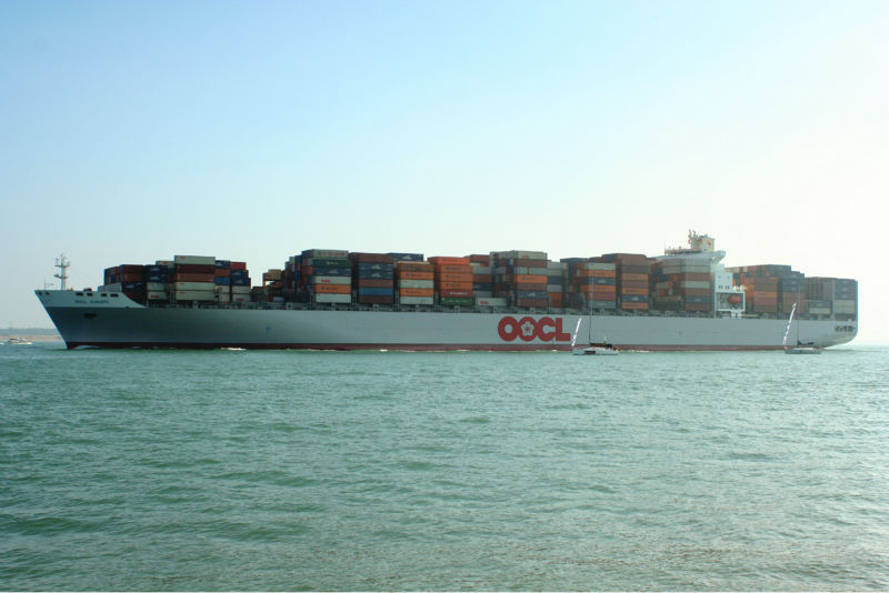 Foshan heavy container shipping to DOHA(Tiles cargo)