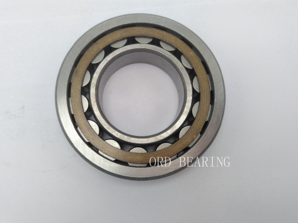 Cylindrical roller bearings 100 technogym prices