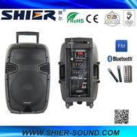 SHIER High Quality Subwoofer AK12-302A Guitar Power Amplifier For Sale