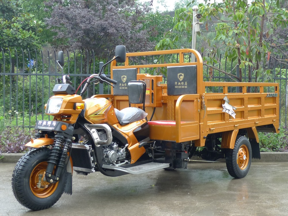 Strong Water-Cooled 200cc Exquisite Design Pedicab For Cargo