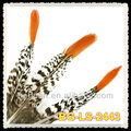 15-20cm Natural Red Tips Feather Pheasant Golden Tail