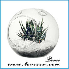 It's a Wonderful World...Small Terrarium Vibrant Moss Terrarium Indoor Garden Apartment Glass Terrarium Garden