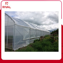 High Quality Covering Sheet PE Plastic Commercial Greenhouse Film