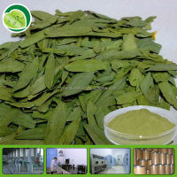 Strong and high quality senna leaf extract sennosides