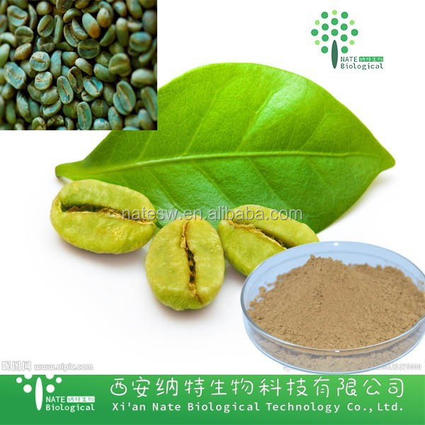 Pure High Quality Green Coffee Bean Extract Manufacturer / Chlorogenic Acid 99%